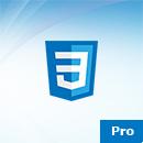Pro Site, Basic